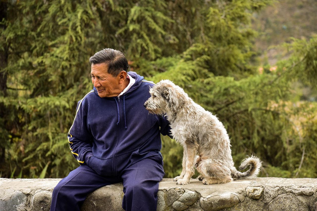 Pet-Therapy-a-Supporto-degli-Anziani-Quali-Benefici-sulla-Mente Pet Therapy a supporto degli anziani. Quali benefici?