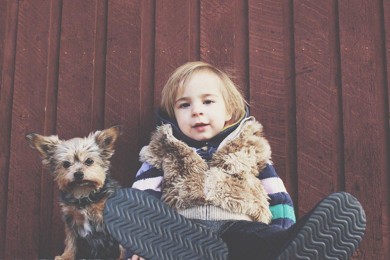Animali-Domestici-Come-Scegliere-il-Piu-Adatto-ai-Bambini-Piccoli Animali domestici, come scegliere il più adatto ai bambini