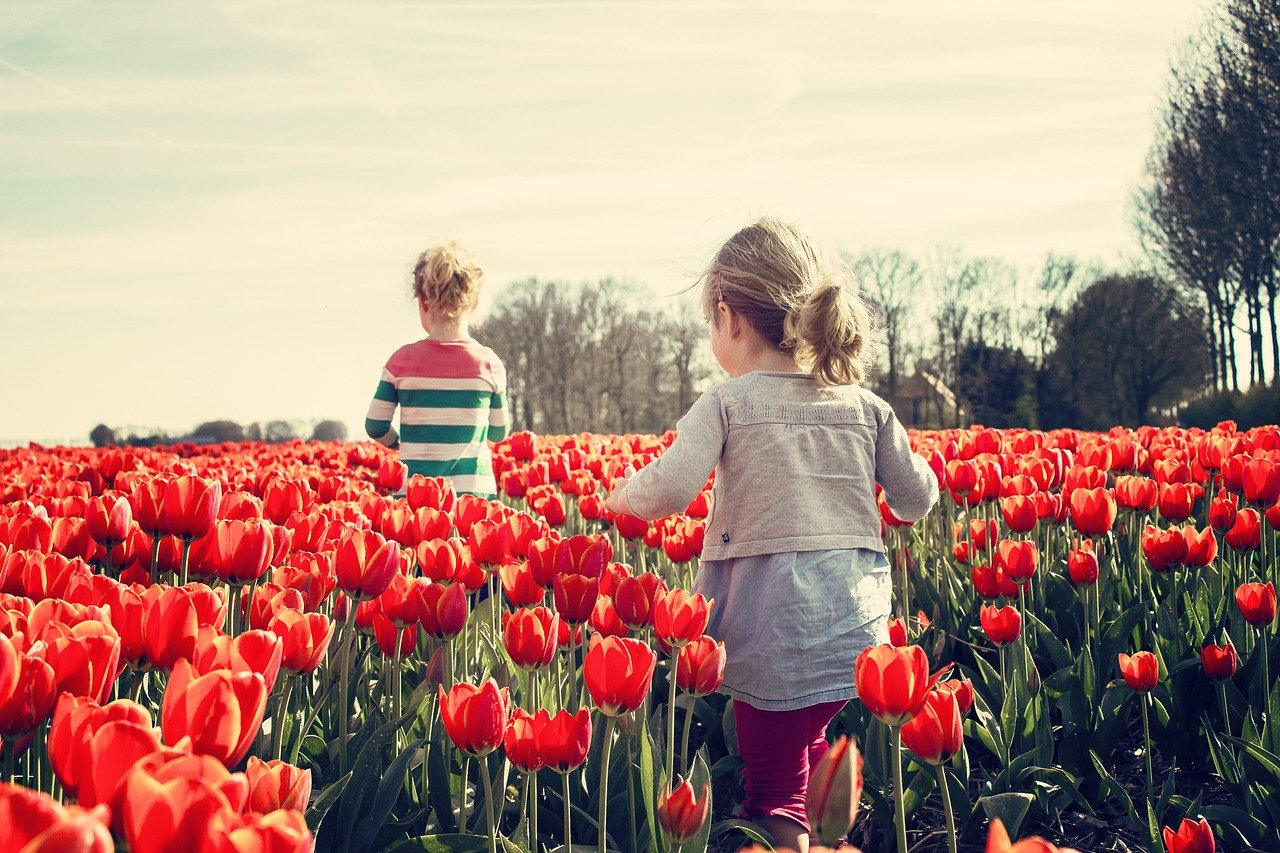 Natura-e-Pensiero-Montessori Perché è importante la natura per i bambini?